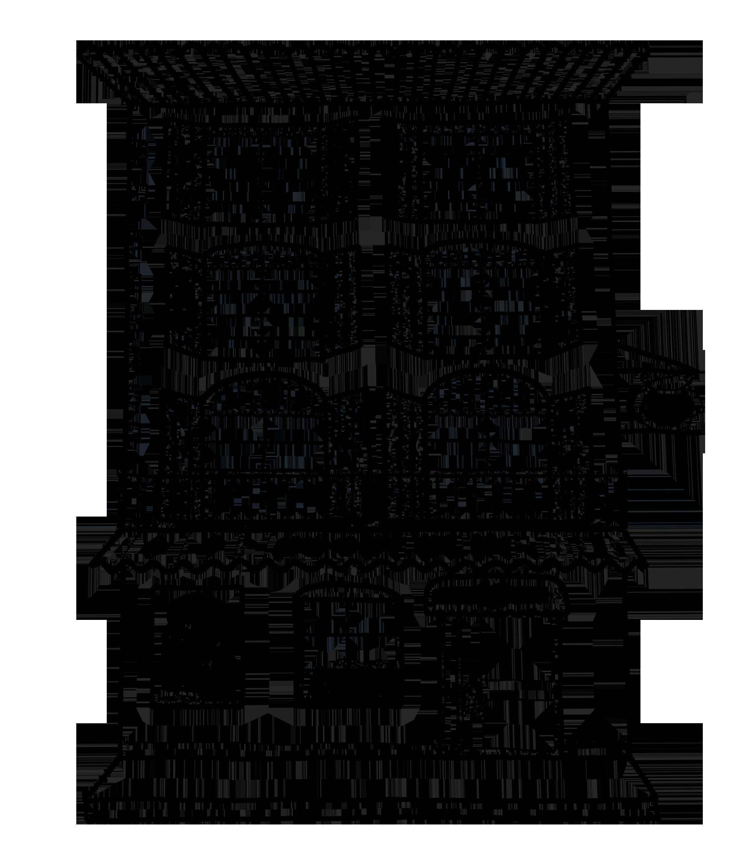 Logo Hotel Mignon